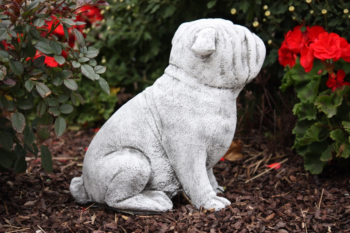 Steinfigur bulldogge frostfest gartenfigur steinguss hund for Mops dekoration